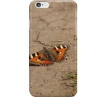 Butterfly On Parched Earth iPhone Case/Skin