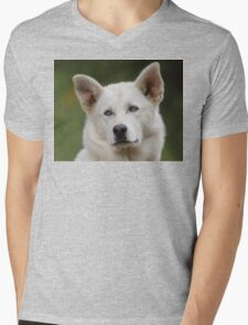 Working Dog Portrait Mens V-Neck T-Shirt