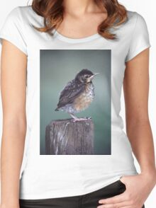 Baby Robin Portrait Women's Fitted Scoop T-Shirt