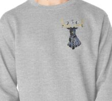 Guardian of Serenity Pullover