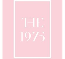 The 1975 Pink by Matty Sievers