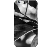 Apples to Ashes iPhone Case/Skin
