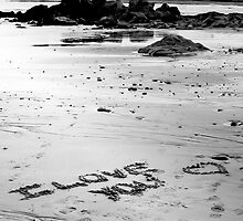 Love On The Beach by Scott Ruhs
