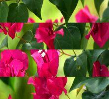Pink Ribbon of Flowers Sticker