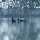 On the Murray I by Jessy Willemse