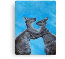 Kangaroo Island Kangaroos Canvas Print