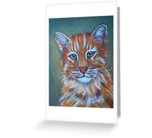 Asiatic Golden Cat Greeting Card