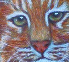 Asiatic Golden Cat Sticker