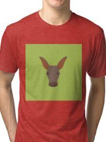 Aardvark Tri-blend T-Shirt