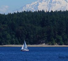 In the shadow of Mt. Rainer by Rainydayphotos