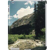 Empty River iPad Case/Skin