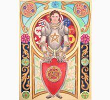Sir Gawain the Gallant Unisex T-Shirt