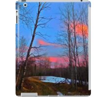 East Millinocket, Maine Woods iPad Case/Skin