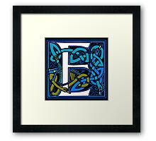 Celtic Peacocks Letter E Framed Print