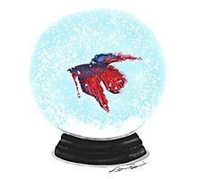 Snow Globe Photographic Print