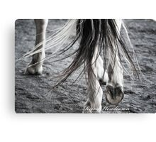 One Step in the Right Direction Canvas Print