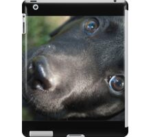 Baby Lab iPad Case/Skin