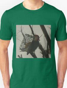 Beautiful Bright Bird / Woodpecker T-Shirt