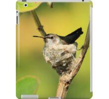 Hummingbird Sitting On Eggs iPad Case/Skin