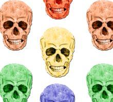 Skull Rainbow Sticker