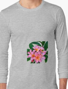 Pink Frangipani Flowers Photograph Long Sleeve T-Shirt