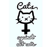 Cats Against Cat Calls  Photographic Print
