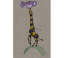 Bumble Giraffe Photographic Print