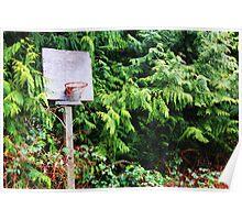 Basketball Forrest Poster