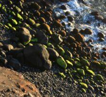 Rocks and sand Sticker