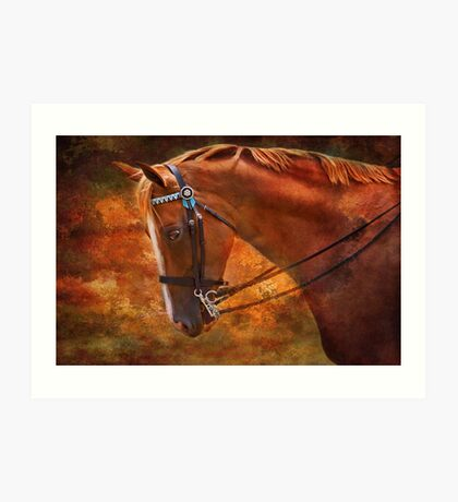 Red And Gold - Horse Photography Art Print