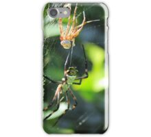 Spider After Molting iPhone Case/Skin