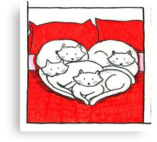 Kittens on a bed Canvas Print
