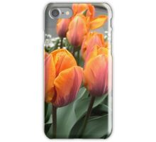 Arrived tulips iPhone Case/Skin