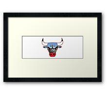 Bulls 1 Framed Print