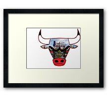 Bulls 6 Framed Print