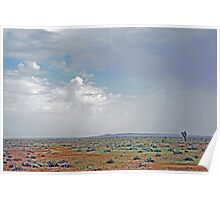A Beautiful Barren Landscape Poster