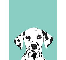 Dalmatian dog cute black and white puppy funny gift for dog owner with dalmatians  Photographic Print