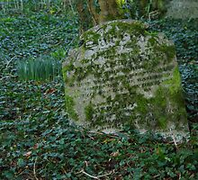 Headstone by Deb Vincent