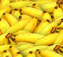 Bananas about Bananas! by Laurenthehuman
