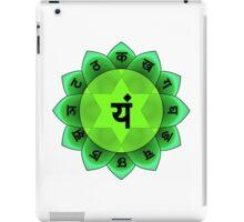 Beautiful Spiritual Mandala iPad Case/Skin