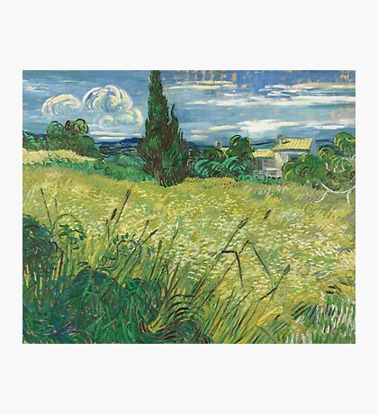 Vincent Van Gogh - Green Field, 1889 Photographic Print