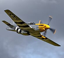 North American P-51D Mustang 'Ferocious Frankie' by Andrew Harker
