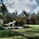 Ghost Horse by Eileen McVey