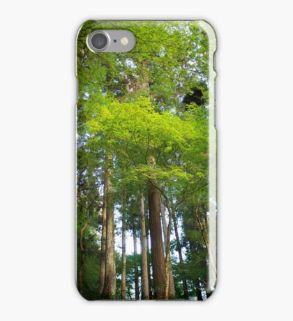 Trees in Korankei valley iPhone Case/Skin