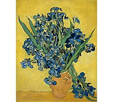Vincent Van Gogh - Irises, May 1890 - 1890 Photographic Print