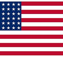 US Flag, WAR FLAG, 48 stars. Used 47 years, July 4, 1912, to July 3, 1959. by TOM HILL - Designer