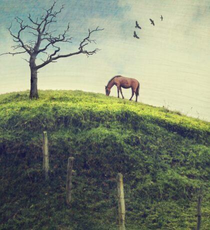 Horse on a Colombian Hillside Sticker