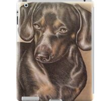 Brown Dachshund dog drawing of pet portrait  iPad Case/Skin