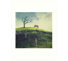 Horse on a Colombian Hillside Art Print
