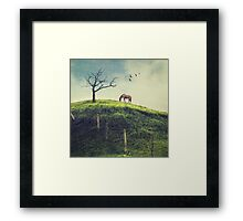 Horse on a Colombian Hillside Framed Print
